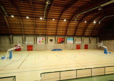 basket_salus